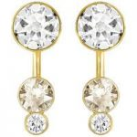 Swarovski Slake Dot Gold Earring Jackets